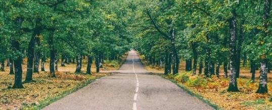 Los obstáculos en nuestro camino